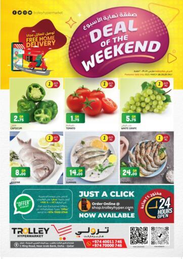 Qatar - Umm Salal Trolley Hypermarket offers in D4D Online. Deal of The Weekend. . Till 20th March