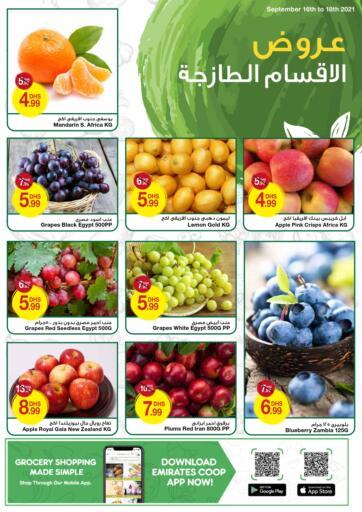UAE - Dubai Emirates Co-Operative Society offers in D4D Online. Fresh Deals. . Till 18th September