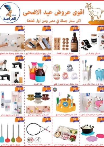 Egypt - Cairo Alfiraeina Center Shoubra  offers in D4D Online. Special Offer. . Until Stock Lasts