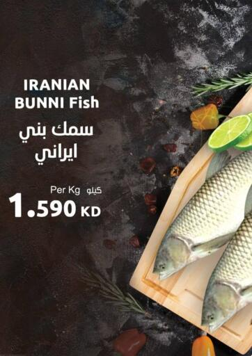 Kuwait Sultan Center offers in D4D Online. Seafood Festival. . Only on 31st December