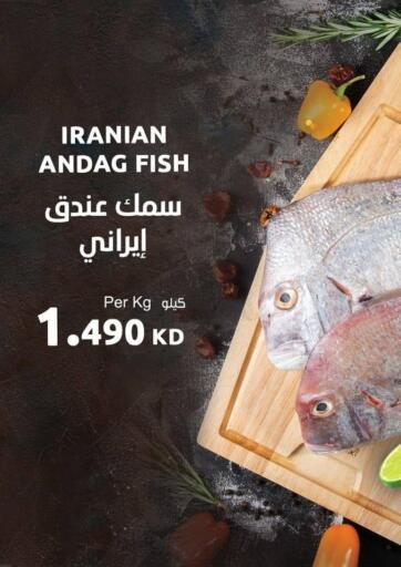 Kuwait Sultan Center offers in D4D Online. Seafood Festival. . Only On 21st January