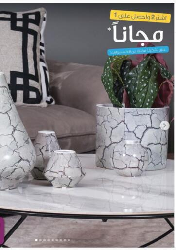 Kuwait Safat Home  offers in D4D Online. Buy 2 Get 1 Free Offer. . Until Stock Last