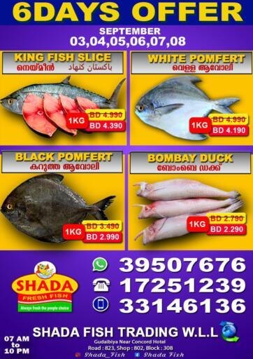 Bahrain Shada Fish offers in D4D Online. 6 Days Offer. Enjoy 6 Days Offer At Shada .. This offer is valid Till 8th September 2021.  . Till 8th September