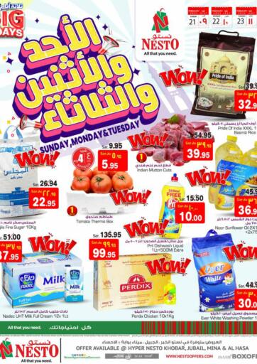 KSA, Saudi Arabia, Saudi - Al Hasa Nesto offers in D4D Online. Sunday,Monday & Tuesday Offer. Now you can get your products from your favorite brands during the 'Sunday, Monday & Tuesday Offer' at Nesto Stores. This offer is only valid Till 23rd February 2021.. Till 23rd February