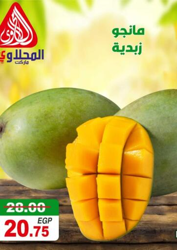 Egypt - Cairo El Mahallawy Market  offers in D4D Online. Special Offer. . Till 17th August