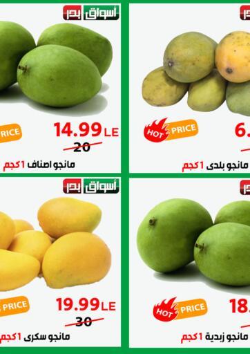 Egypt - Cairo Aswak Badr offers in D4D Online. Hot Price. . Until Stock Last