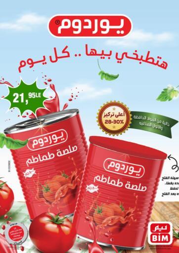 Egypt - Cairo BIM Market  offers in D4D Online. Special Offer. . Until Stock Last