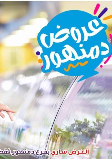 Egypt - Cairo  El Sorady market  offers in D4D Online. Damanhour Offer. . Till 21st October