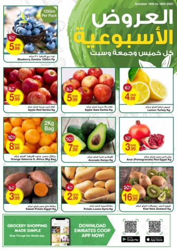UAE - Dubai Emirates Co-Operative Society offers in D4D Online. FRESH MID WEEK. . Till 16th October
