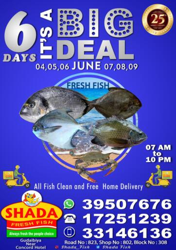 Bahrain Shada Fish offers in D4D Online. 6 Days it's A Big DeaI. 6 Days it's A Big DeaI @ Shada Fish! Get Your Products at Cheapest Price.. Offer Valid Till 9th June. . Until 9th June