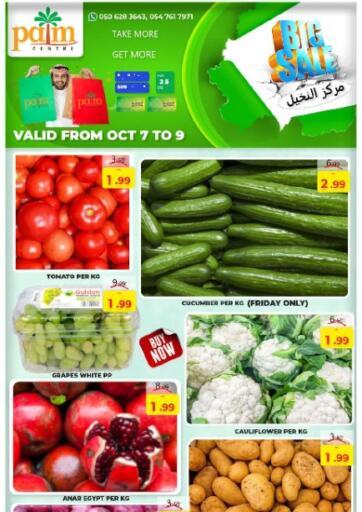 UAE - Sharjah / Ajman Palm Centre LLC offers in D4D Online. Big Sale. . Till 9th October