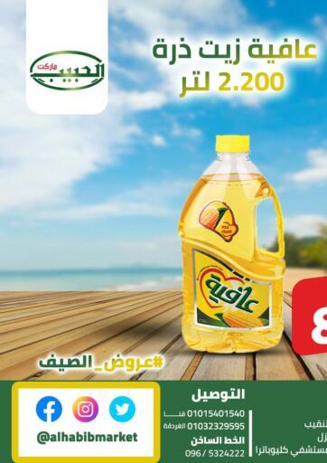 Egypt - Cairo Al Habib Market offers in D4D Online. Summer Offers. . Until Stock Last
