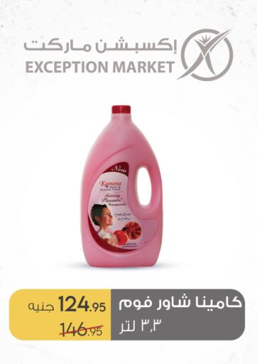 Egypt - Cairo Exception Market offers in D4D Online. Special Offer. . Till 31st August