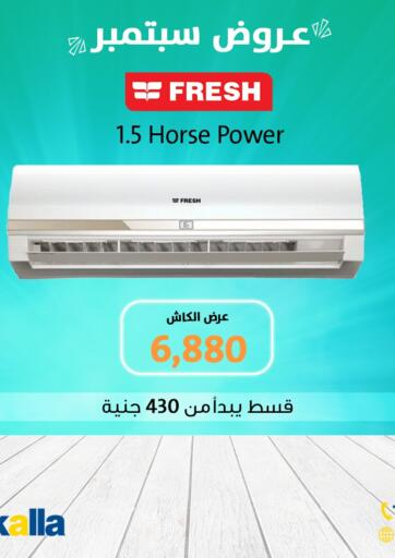 Egypt - Cairo Rizkalla offers in D4D Online. September Offer. . Until Stock Last