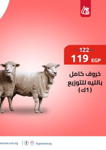 Egypt - Cairo Hyper One  offers in D4D Online. Offers in Butchery. Offers in Butchery is Available At Hyper One Supermarket .Offer Valid Till Until stock Last.. Have A Happy Shopping!!!. Until Stock Last