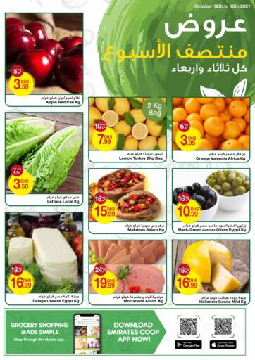 UAE - Dubai Emirates Co-Operative Society offers in D4D Online. FRESH MID WEEK. . Till 13th October