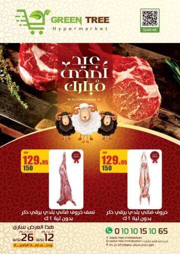 Egypt - Cairo Green Tree Hypermarket - Sohag offers in D4D Online. Eid Al Adha Mubarak. . Till 26th July
