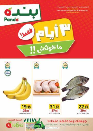 Egypt - Cairo Panda  offers in D4D Online. 3 Days Offer. . Till 28th August