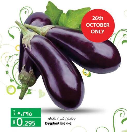 Till 28th October